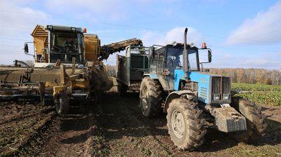 Осенние полевые работы идут в Гродненском районе