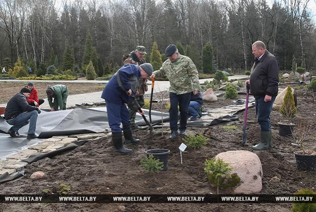 Аппарат Совмина работал на посадке деревьев и благоустройстве Ботанического сада