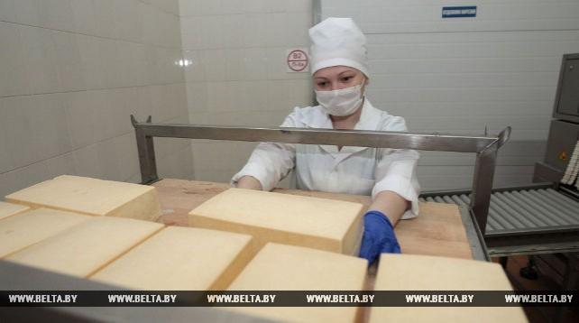 """""""Полесские сыры"""" производят 12-14 т сыров в сутки"""