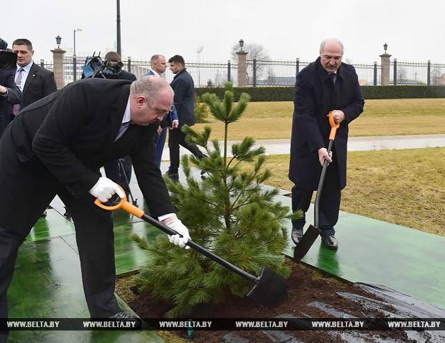 Маргвелашвили посадил дерево на Аллее почетных гостей у Дворца Независимости