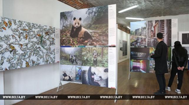 В Минске открылась выставка World Press Photo