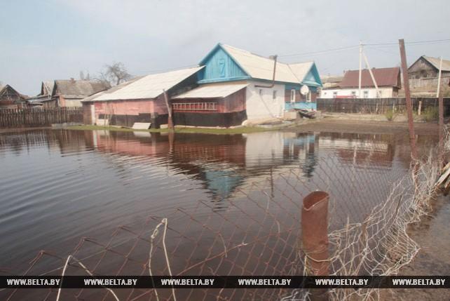 Около 30 подворий остаются подтопленными в результате разлива реки Друть в Рогачеве
