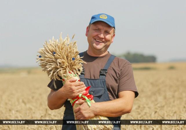 Миллионную тонну зерна собрали в Минской области