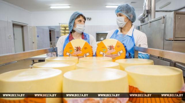 Пружанский молочный комбинат производит 8 тыс. т сыра в год