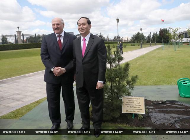 Чан Дай Куанг посадил дерево на Аллее почетных гостей у Дворца Независимости