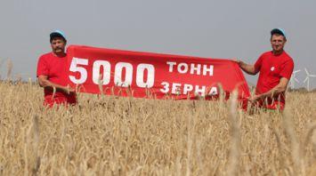 Миллионный рубеж по намолоту зерна преодолели в Могилевской области