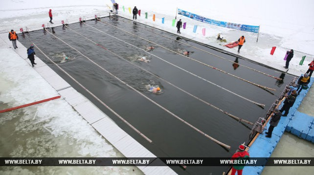 Открытый чемпионат Беларуси по спортивному зимнему плаванию проходит в Минске