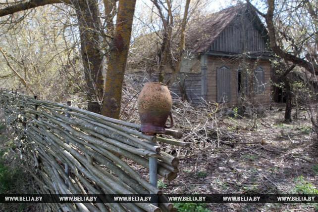 92 покинутые деревни находятся на территории Полесского радиационно-экологического заповедника