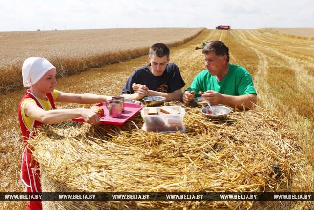 Семейный экипаж Москвенковых первым в Мостовском районе намолотил свыше 1 тыс. т зерна