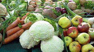 Обеспечение внутреннего рынка плодоовощной продукцией: вопросы хранения и переработки
