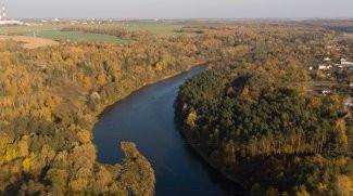 Современное состояние и перспективы развития лесного хозяйства Беларуси
