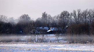 Об отчуждении жилых домов в сельской местности и совершенствовании работы с пустующими домами