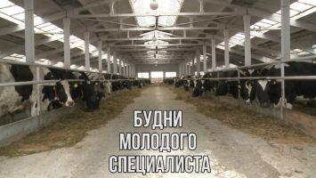 Вся правда о распределении в сельскую местность
