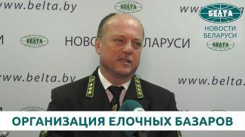 Лесхозы Беларуси планируют реализовать не менее 160 тыс. новогодних деревьев