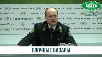 Елочные базары в Беларуси откроются 20 декабря