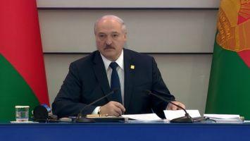 Александру Лукашенко предложили стать почетным президентом НОК, но он отказался