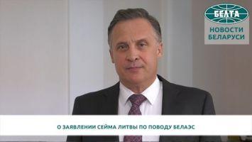 Савиных прокомментировал заявление Сейма Литвы по поводу БелАЭС