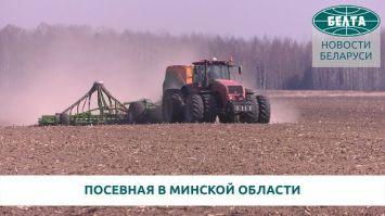 Посевная в Минской области