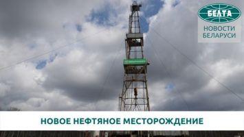 В Беларуси открыли новое нефтяное месторождение