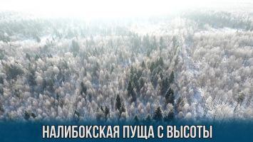 Зимние пейзажи Налибокской пущи с высоты