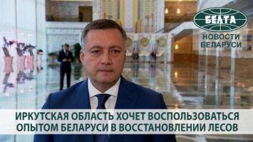 Иркутская область хочет воспользоваться опытом Беларуси в восстановлении лесов