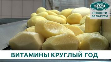"""Витамины круглый год: как хранят овощи и фрукты в агрокомбинате """"Ждановичи"""""""