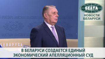 В Беларуси создается единый экономический апелляционный суд