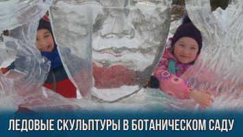 Ледовые скульптуры в Ботаническом саду Минска
