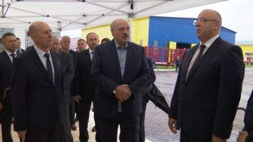 Лукашенко ориентирует регионы на большую самостоятельность в заготовке кормов