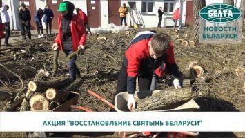"""Волонтеры движения """"Доброе сердце"""" благоустроили территорию у минского храма"""