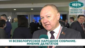 Делегат ВНС Андрей Струневский: нужно использовать те возможности, которые у нас есть