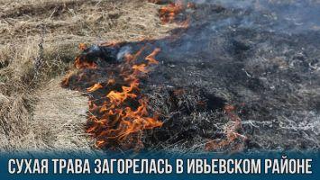 Сухая трава загорелась в Ивьевском районе