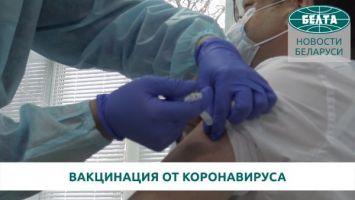 """Выпущенной в Беларуси вакциной """"Спутник V"""" привились руководители министерств"""