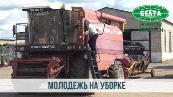 Как молодежь Минской области помогает убирать урожай