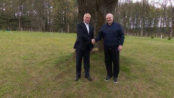 Неформальная встреча Лукашенко с Додоном