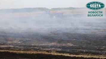 В Петриковском районе ликвидируют пожар на торфянике