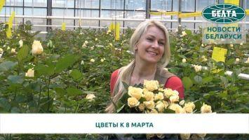 Как выращивают цветы к празднику