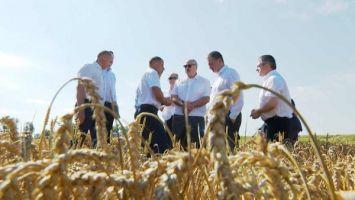 Лукашенко рассчитывает, что урожай в этом году составит 10,5 млн т зерна