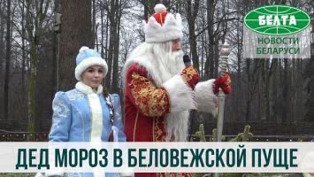 Памятный знак Новому году открыли в поместье Деда Мороза в Беловежской пуще