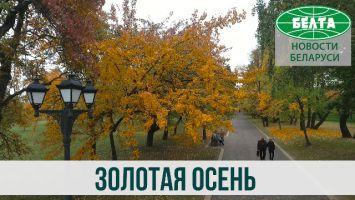 Золотая осень в Минске