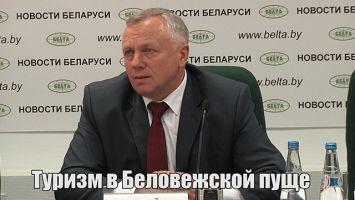 Туризм в Беловежской пуще