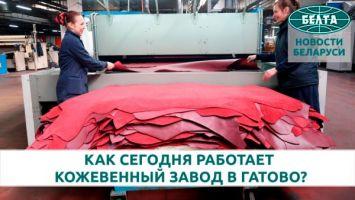 Как сегодня работает кожевенный завод в Гатово