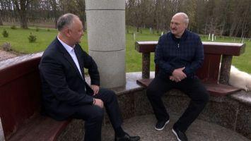 Лукашенко: народ не будет аплодировать убийству Президента, изберут еще жестче человека