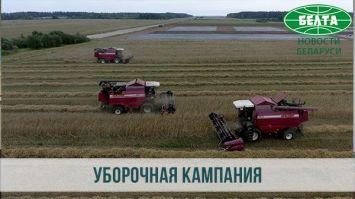 Уборка зерновых в Вилейском районе