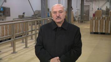 Лукашенко о массовых мероприятиях: запрещать - не наша концепция, но мы туда никого не загоняем