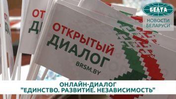 Предложения молодежи для вынесения на ВНС обсудили в рамках онлайн-диалога