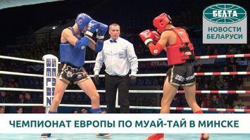 Чемпионат Европы по муай-тай проходит в Минске