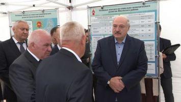 Лукашенко в ближайшее время изучит ситуацию в сфере переработки льна