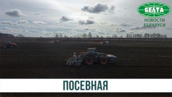 Посевная в Копыльском районе