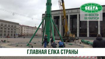Главную елку страны устанавливают на Октябрьской площади
